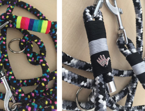 Hundeleine aus Seil: Leinen Unikate neu im Shop